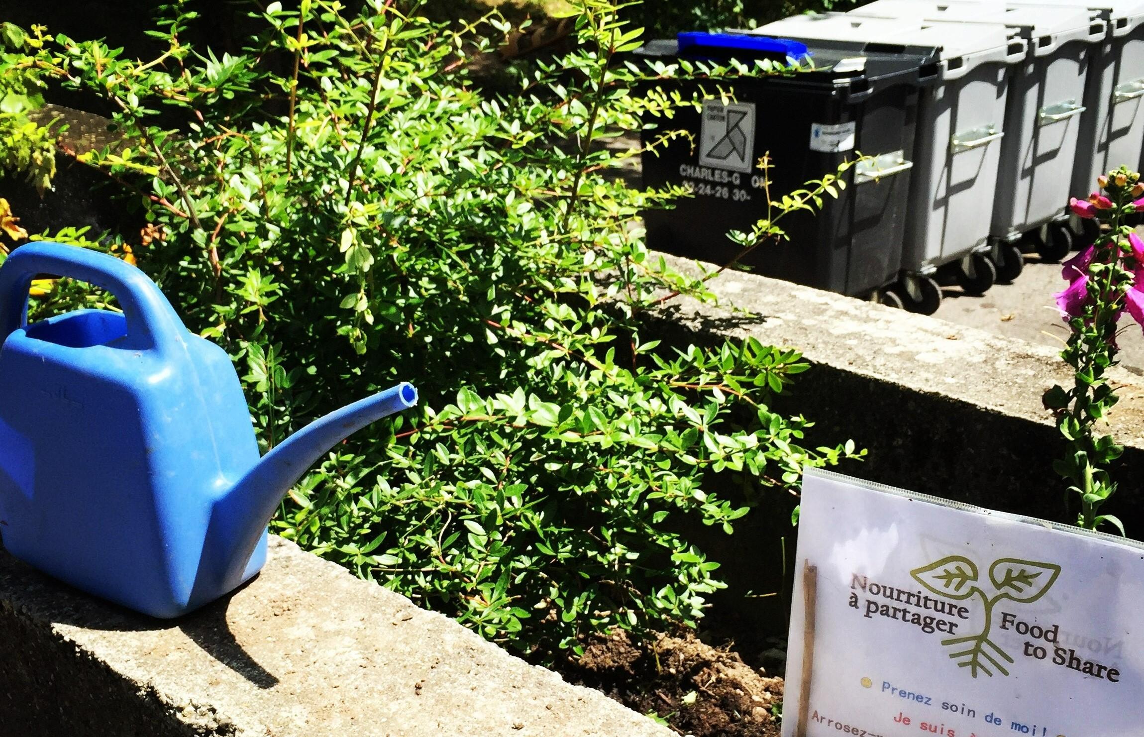 arrosoir, fleurs, poubelles panneau Inscroyables Comestibles Genève